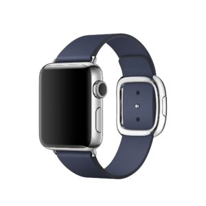 Apple Watch 38mm (MJ352) Stainless Steel Modern Large Blue